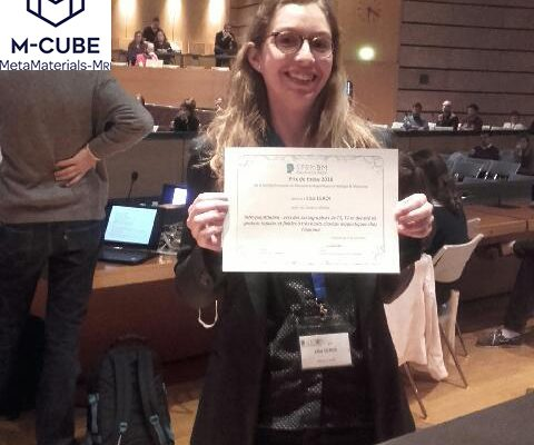 "Lisa LEROI, ""Best Thesis Award 2018"" of SFRMBM"