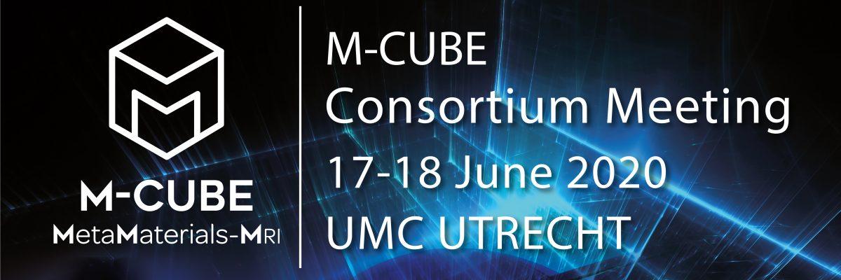 Meeting UMC Utrecht 17-18 June 2020